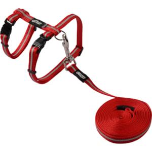 Kattsele med koppel Rogz Alleycat Röd S 24-40 cm