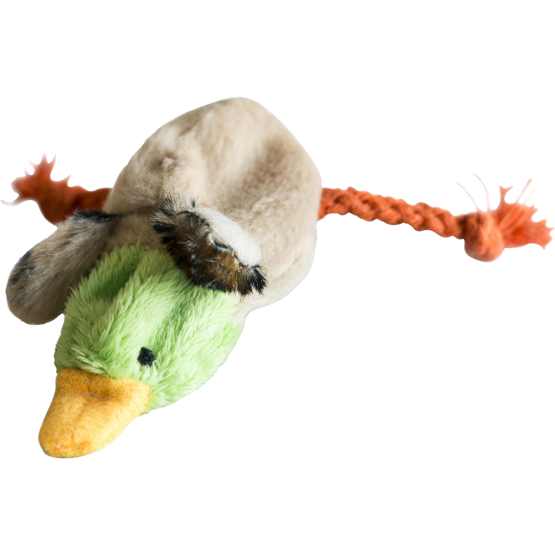 Kattleksak Kitty Play Fågel, Grön