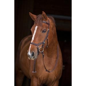 Träns Horseware Rambo Micklem Competition, Brun X-Full