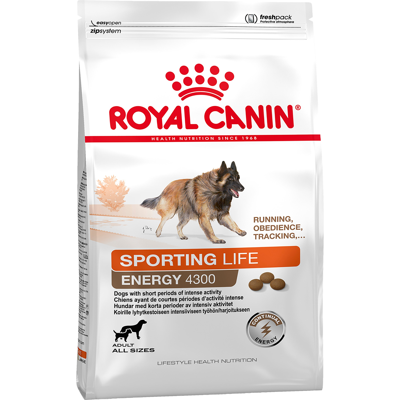 Hundfoder Royal Canin Trail 4300, 15 kg