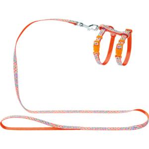 Kattsele med koppel Hunter Seventies, orange