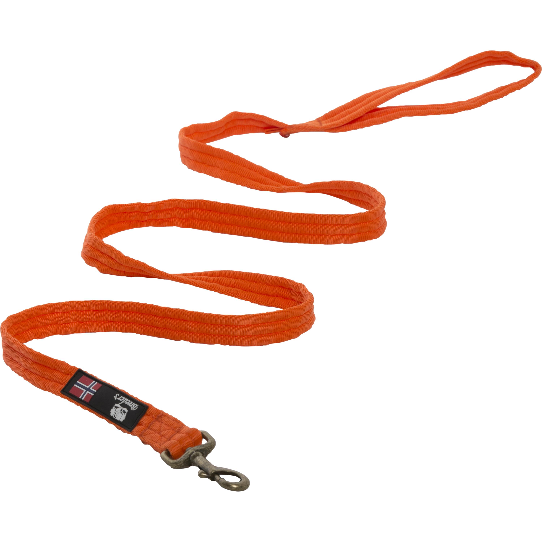 Hundkoppel Breeder's Valkband Orange, 250 cm