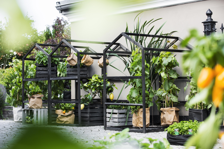 Växthus Estwood Svart, Litet