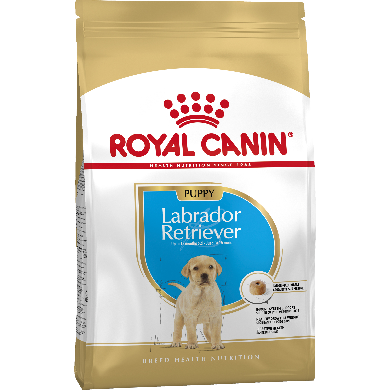 Hundfoder Royal Canin Labrador Retriver 33 JR, 12 kg