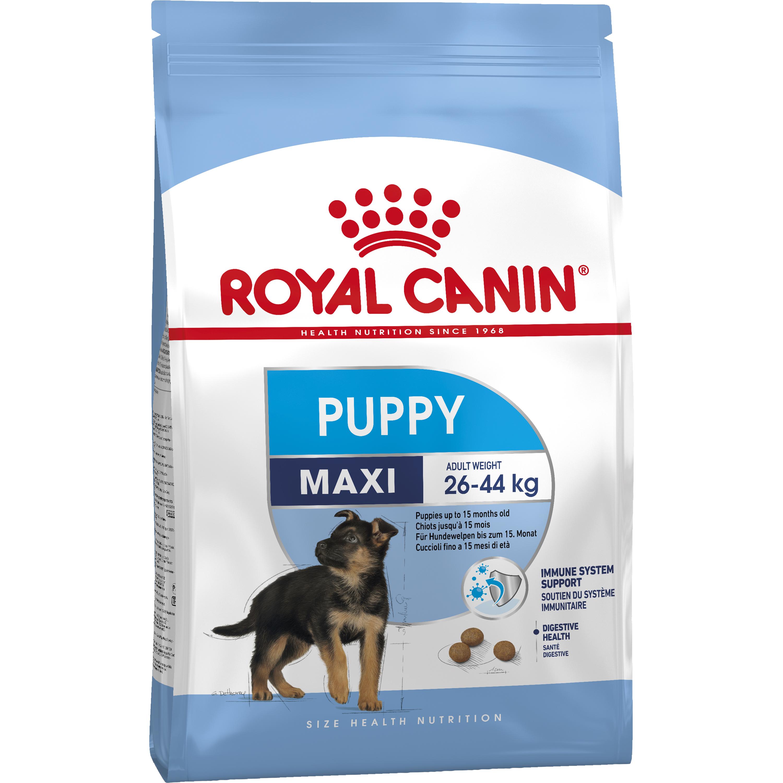 Hundfoder Royal Canin Maxi Junior, 15 kg