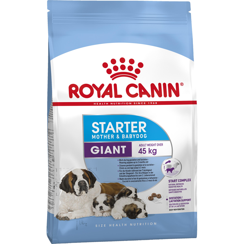 Hundfoder Royal Canin Giant Starter, 15 kg