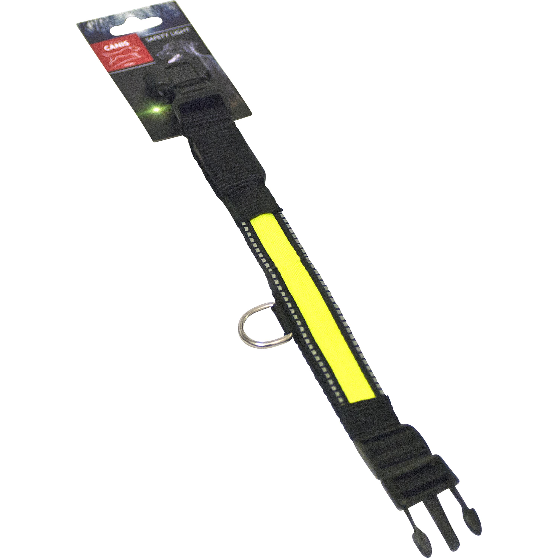 Hundhalsband Active Canis med LED-ljus, Svart/grön 51 cm
