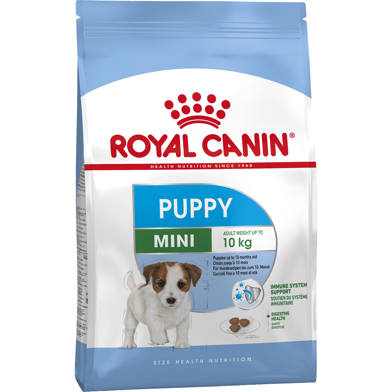 Hundfoder Royal Canin Mini Junior, 8 kg