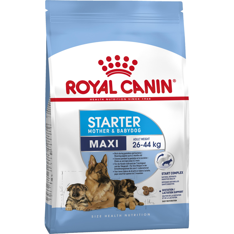 Hundfoder Royal Canin Maxi Starter, 15 kg