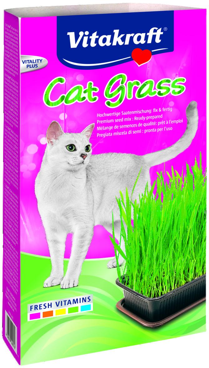 Kattgräs Vitakraft
